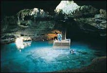 Blue Grotto Devils Den Manatee Springs - Guide Dives
