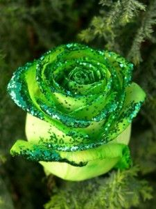 Now I have to figure out how to replicate this with a silk rose.