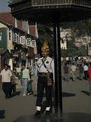On guard, Shimal, Himachal Pradesh