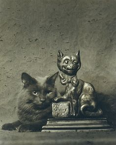 Arnold Genthe (American (born Germany), 1869–1942). [Cat with Statue of Cat], 1930s. The Metropolitan Museum of Art, New York. Gift of Mrs. Robert Aitken, 1957 (57.634.9) #cats