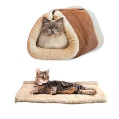 RunHigh Lovely Warm Cushion Foldable Tunnel Bed Fleece House Mat for Cat Puppy Dog >> Can't believe it's available, see it now : Cat Tree and Tower