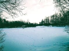 #lesagul #russia #россия #лес #зима #снег #nature #sky #sun #summer #beach #beautiful #pretty #sunset #sunrise #blue #flowers #night #tree #twilight #clouds #beauty #light #cloudporn #green #природа #dusk #weather #day #красота
