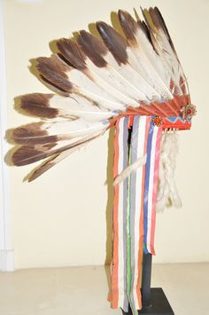 Comanche-(immature golden eagle feathers. With rare presidential ribbons indicating the chief was invited by US president) -1880