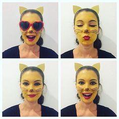 Different Cat Emoji