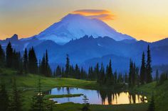 """Mount Rainier Goodnight"" by Inge Johnsson, Frisco (Dallas/Fort Worth area) // Sunset at Tipsoo Lake with Mount Rainier in the distance // Imagekind.com -- Buy stunning, museum-quality fine art prints, framed prints, and canvas prints directly from independent working artists and photographers."