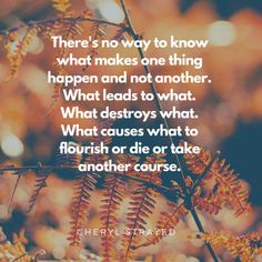 Autumn Cleaning: Re-evaluating Things – Writing Wranglers and Warriors Cheryl Strayed, Warriors, Writer, Cleaning, Autumn, Shit Happens, Feelings, Life, Fall