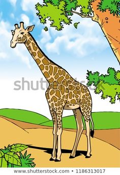 Giraffe Mammals Animal Illustration with smooth graphics and full coloring. So that the illustration of this Giraffe animals will be interesting when used as an image of supporting material, or to be seen. Mammals, Giraffe, Royalty Free Stock Photos, Coloring, Smooth, Graphics, Animal, Illustration, Pictures