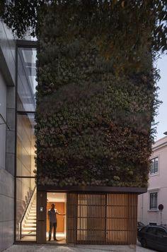 treehouse? Lisbon, Portugal