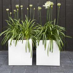Aluminium florida cube planter