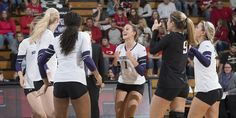 EVANSTON, Ill. — Northwestern volleyball announced its 2017 schedule Thursday, featuring 12 matches against teams that reached the NCAA Tournament last season, including five against squads that reached the quarterfinals.