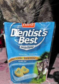 Anna loves her Dentist's Best Cat Treats.