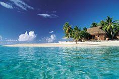 #Polynesia #Tuamotu #Tikehau #Beaches. Fabolous Polynesian sea.