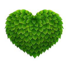 I have a heart of leaves.