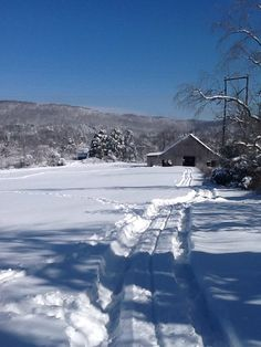 Snow of 2016 in Kentucky Winter Magic, Winter Snow, Winter Time, Winter Christmas, Kentucky Horse Park, I Love Snow, Hot And Humid, Winter Scenery, Country Scenes