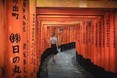 Walking through the thousand Torii at the Fushimi Inari shrine was magical... . . #japan #temple #fushimiinari #beautiful #orange #kyoto #building #hiking #travel #travelphotography #travelgram #passionpassport #welivetoexplore #earthpix #nature #lifeofadventure #tourtheplanet #letsgosomewhere #picoftheday #landscape #landscapephotography #wanderlust #ourplanetdaily #stayandwander #mothernature #wildernessculture #wonderful_places #exploretocreate #theglobewanderer #backpackersjournal Landscape Photography, Travel Photography, Our Planet, Wonderful Places, Kyoto, Wilderness, Temple, Wanderlust, Hiking