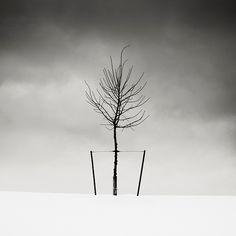 Josef Hoflehner Photographer   Canada & New York State