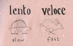 lento ~ slow & veloce ~ fast
