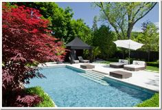 backyard pool inspiration mark hartley 2-tile and pool colour perfect