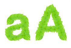 Alfabeto inglés hecho de hojas verdes — Imagen de stock English Alphabet, Green Leaves, Lettering, Stock Photos, Poster, Products, So Done, Calligraphy, Letters