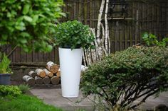 white modern flower pots ideas TerraForm Nuno'ni