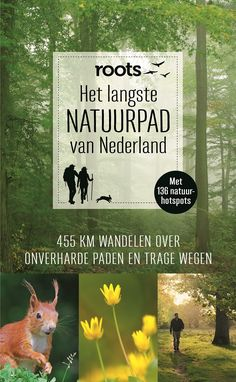 Het langste NATUURPAD van Nederland Hiking Tours, Hiking Trails, Weekender, Holland, Celebrity Travel, Family Travel, Family Trips, Where To Go, Trekking