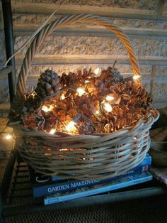 Fairy lights in a basket of pine cones