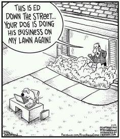 doggie business