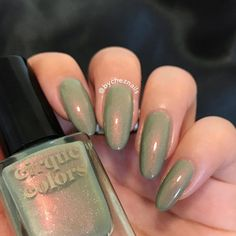 emily • chez nails (@bycheznails) • Instagram photos and videos Succulents Garden, Nail Polish, Photo And Video, Nails, Videos, Photos, Beauty, Instagram, Finger Nails