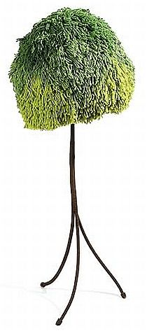 Californian Tree Lamp