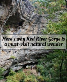 Deep in the heart of Kentucky lies the Red River Gorge, an area of absolutely incredible beauty in Daniel Boone National Forest. Oh The Places You'll Go, Places To Travel, Places To Visit, Kentucky Hiking, Kentucky Vacation, Louisville Kentucky, Kentucky Derby, Kentucky Attractions, Red River Gorge Kentucky