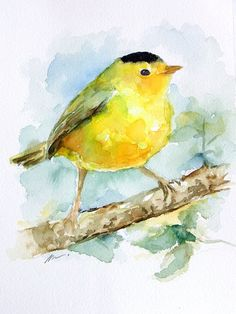 ORIGINAL Watercolors Yellow Bird Warbler Animal Art by NuFineArt5