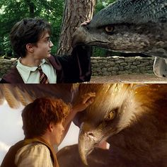Hippogriff or Thunderbird? #repost #harrypotter.vids Follow us (@muggleland__) for more  All credits to respective owner// credit unknown (dm for credit) #potter #harry #malfoy #louis #liam #niall #weasley #gryffindor #potterhead #hogwarts #granger #slytherin #ronweasley #hermionegranger #voldemort #hermione #ravenclaw #draco #snape #dracomalfoy #hufflepuff #liampayne #harrystyles #louistomlinson #jkrowling #hp #niallhoran