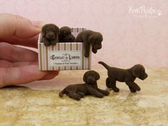 """Box of Chocolates"" is a dollhouse miniature scale grouping of chocolate lab pups in various pose.  Created by hand using polymer clay & powder-fine flock."