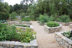 Portfolio : Vegetable Beds : Paul Hendershot Design