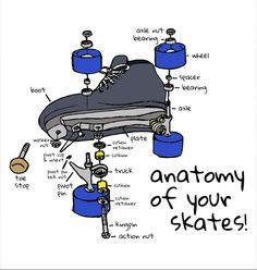 Do you know the anatomy of your skates? Everything rolls fine until you can't roll anymore, and if your skates fail, you can't derby. Whether it's the plate that cracks, the toe stop that pops… Roller Derby Skates, Roller Derby Girls, Quad Skates, Roller Derby Clothes, Skating Rink, Roller Skating, Figure Skating, Derby Time, Derby Day