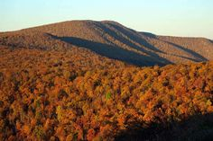 Shenandoah National Park - I want to hike this section of the Appilation Trail.