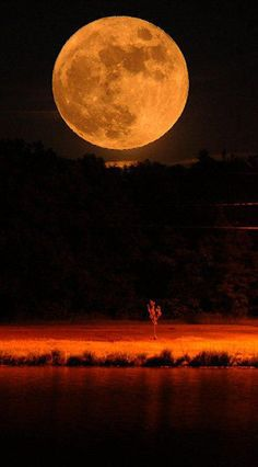 A full moon rising up over the Hudson Valley