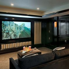 Traditional Media Room Design, Pictures, Remodel, Decor and Ideas - page 16