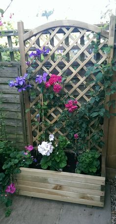 One of our Easton Trellis Planters! Doesn't it look gorgeous?