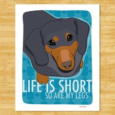 Life is Short. . . So are my legs.