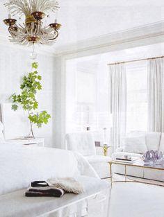 Winter white + Kelly green