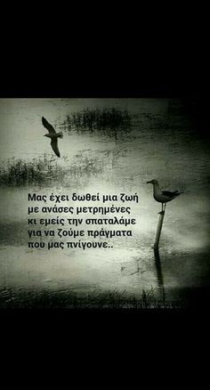 My Life Quotes, Me Quotes, Cool Words, Wise Words, Love Others, Famous Last Words, Greek Quotes, Deep Words, Short Quotes