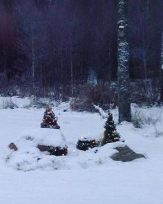 Light blue moment ❄️ #talvi #winter #lumi #snow #finland
