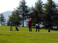 Absinthe La Reine in a Golf tournament www. Golf Courses, Queen, Knowledge
