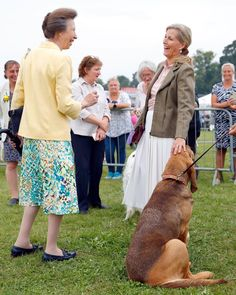 Prince Edward, Prince Philip, Countess Wessex, Extended Family, Hereford, Bloodhound, Buckingham Palace, Queen Elizabeth Ii