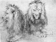 Google Image Result for http://upload.wikimedia.org/wikipedia/commons/e/e2/Durer_lions_(sketch).jpg