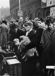"""""""Dogs for Sale,"""" Petticoat Lane, London, 1949 by Grace Robertson Vintage London, Vintage Dog, Old London, London History, British History, East End London, Dogs For Sale, Tower Of London, London Life"""