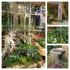 Love this garden! Edible forest display at NW Garden Show 2013.