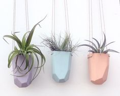 The faceted beauty will dangle perfectly, displaying air plants, succulents, or even flowers with grace and sophistication. Imbibe the aural tones