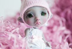 Dust of Dolls BJD